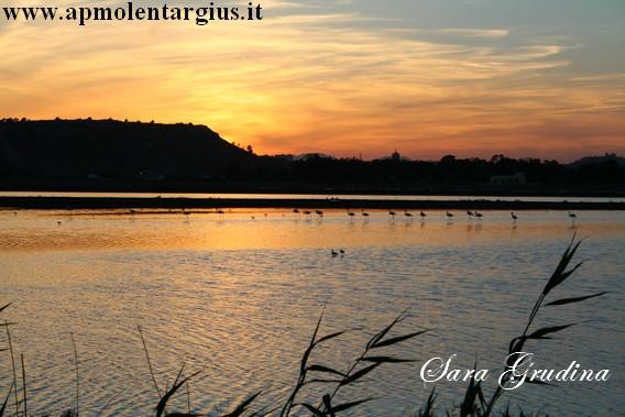 tramonto_saline_poetto
