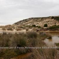 dune_chia_3