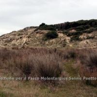 dune_chia_5