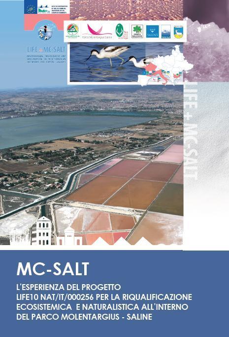 Mc - Salt