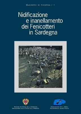 Nidificazione e inanellamento dei fenicotteri in Sardegna