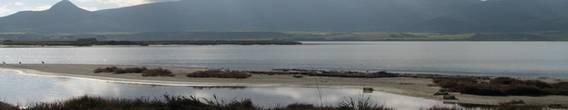 Zona umida Sardegna