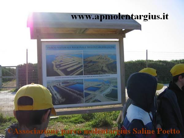 Escursione al Parco Molentargius Saline